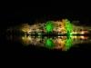 八鶴湖 夜桜ライトアップ1