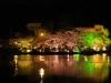 八鶴湖 夜桜ライトアップ6
