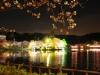 八鶴湖 夜桜ライトアップ15