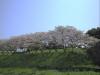 松之郷 東金青年の家の裏側