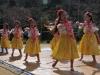 東金ダンスまつり6