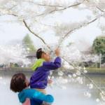 入選「春感」敦賀和隆